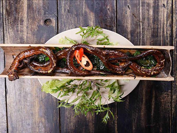 Trầm trồ các món lươn tươi ngon bổ dưỡng dễ làm nhất