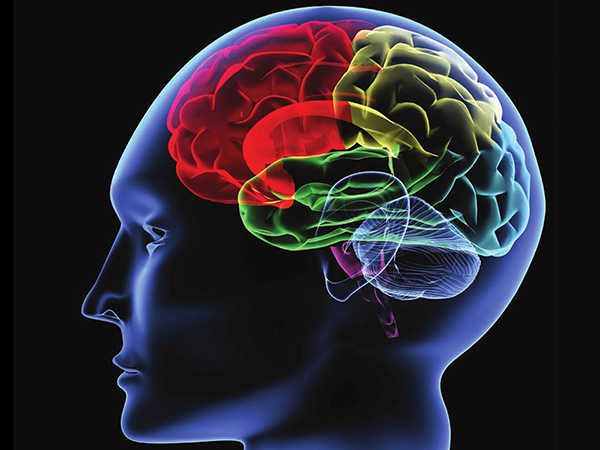 Rối loạn thần kinh thực vật nguyên nhân do đâu, điều trị như nào?
