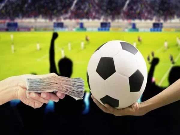 Hãy là một người chơi cá cược bóng đá chuyên nghiệp