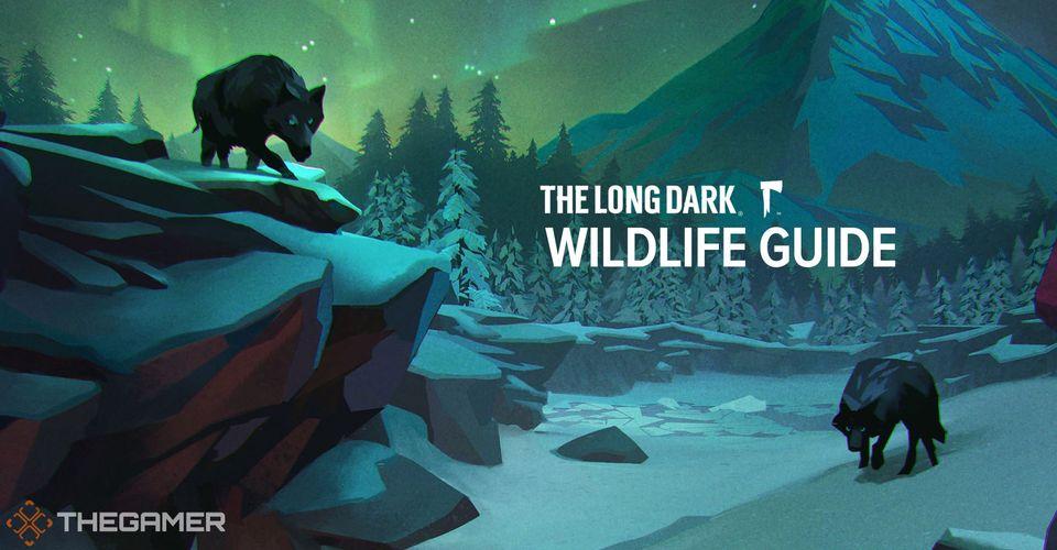 The Long Dark: Hướng dẫn động vật hoang dã