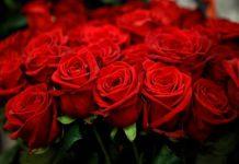 Mơ thấy hoa hồng đánh con nào? Làm điềm may hay rủi